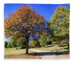 Piedmont Park Atlanta Ga 2 Fleece Blanket