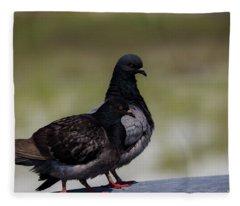 Pigeons  Fleece Blanket