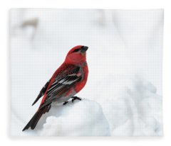 Pine Grosbeak In The Snow Fleece Blanket
