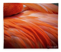 Pink Feathers Fleece Blanket