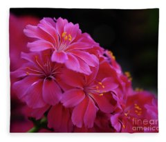 Pink Floral Fleece Blanket