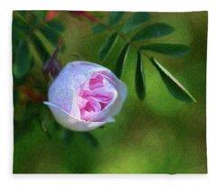 Pink Rose - Romantic Encounter - By Omaste Witkowski Fleece Blanket