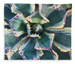 Pinwheel Succulent Fleece Blanket