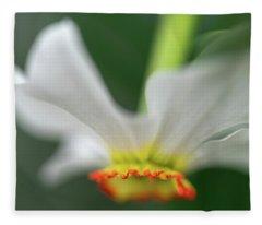 Poet's Daffodil Fleece Blanket
