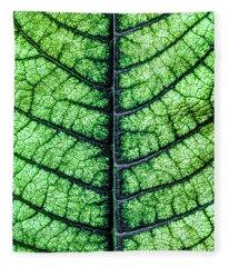 Poinsetta Leaf In Abstract Macro Fleece Blanket