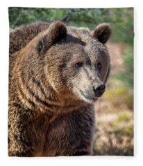 Portrait Of A Female Grizzly Bear Fleece Blanket