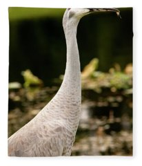Portrait Of Ike The Sandhill Crane Fleece Blanket