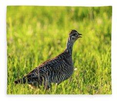 Prairie Chicken Hen Fleece Blanket