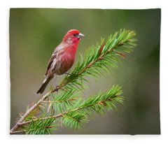 Pretty Bird Fleece Blanket