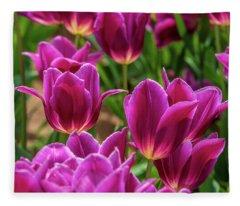 Pretty Purple Tulips Fleece Blanket