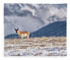 Pronghorn Fleece Blanket