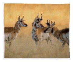 Pronghorn Morning Meeting Fleece Blanket