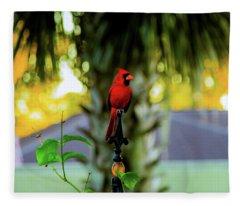 Proud Male Cardinal Fleece Blanket