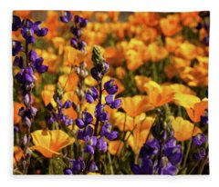 Purple And Gold Fleece Blanket