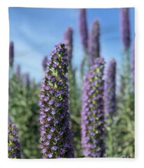 Purple Hyssop  Fleece Blanket