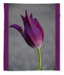Purple Tulip Fleece Blanket