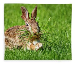 Fleece Blanket featuring the photograph Rabbit With Grass by Allin Sorenson