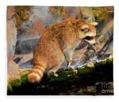 Raccoon 609 Fleece Blanket