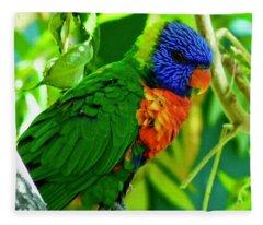 Fleece Blanket featuring the photograph Rainbow Lorikeet by Dan Miller