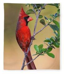 Red All Over Fleece Blanket