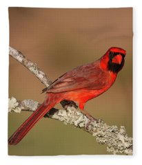 Red And Radiant Fleece Blanket