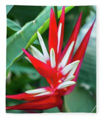 Red And White Birds Of Paradise Fleece Blanket