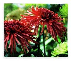 Red Chrysanthemums Fleece Blanket