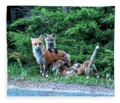 Red Fox Family Fleece Blanket