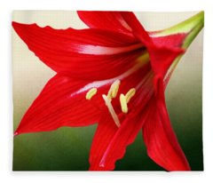 Red Lily Flower Fleece Blanket