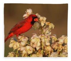 Red On White Fleece Blanket