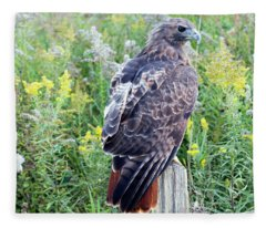 Red-tailed Hawk On Fence Post Fleece Blanket
