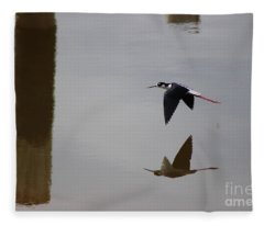 Reflection Of The Salton Sea Black Neck Stilt Flying Fleece Blanket