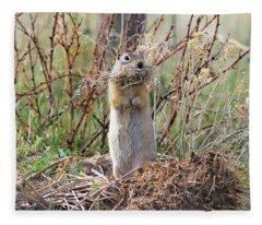 Richardson's Ground Squirrel Montana Fleece Blanket