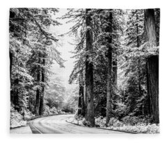 Road Through The Silver Forest Fleece Blanket