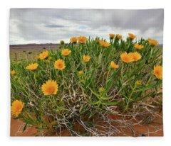Roadside Wildflowers Along Highway 24 In Utah Fleece Blanket