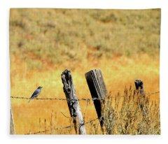 Rocky Mountain Blue Bird Fleece Blanket