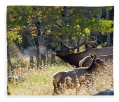 Rocky Mountain Bull Elk Bugeling Fleece Blanket
