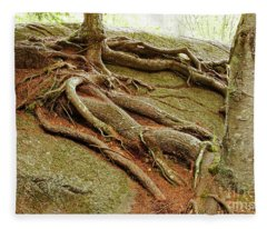 Roots On Rock Fleece Blanket