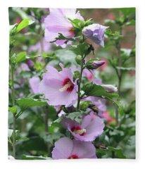 Rose Of Sharon Flowers Fleece Blanket