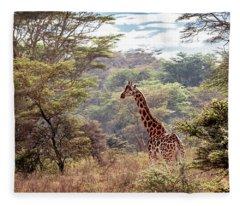 Rothschild Giraffe In Lake Nakuru Kenya Fleece Blanket