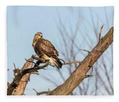 Rough-legged Hawk 2018-4 Fleece Blanket