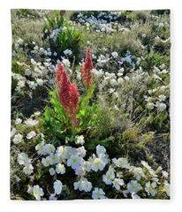 Ruby Mountain's Wildflower Prairie Fleece Blanket