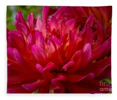 Ruby Red Dahlia Fleece Blanket