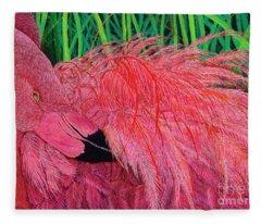 Ruffled Flamingo Fleece Blanket