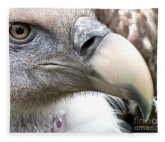 Ruppells Griffon Vulture Fleece Blanket