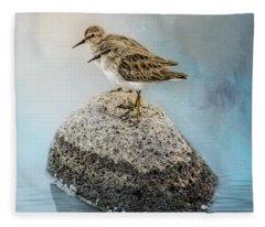 Sandpipers On A Rock Fleece Blanket