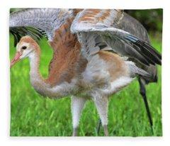 Sandy Crane Shows New Feathers Fleece Blanket
