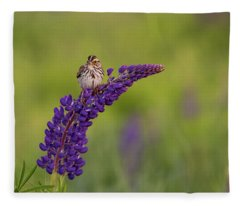 Savannah Sparrow Fleece Blanket