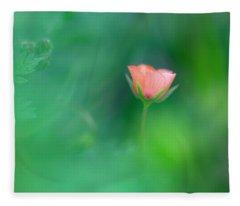 Scarlet Pimpernel Fleece Blanket