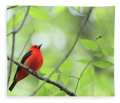 Scarlet Tanager Fleece Blanket